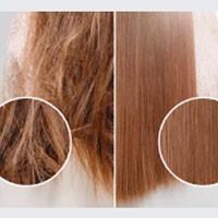 ▷ Champús para cuidado del cabello dañado estropeado - Dizma
