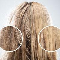 Mascarillas y Tratamientos - Para cabello dañado y estropeado - Dizma
